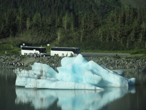 An iceberg in Portage Lake from the Portage Glacier dwarfs tour buses near Whittier, Alaska.